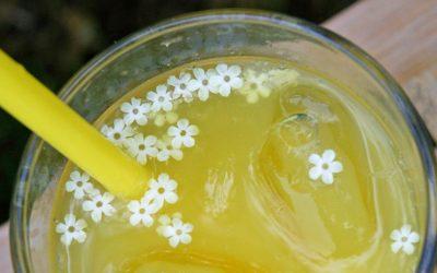 Домашен сок от бъз